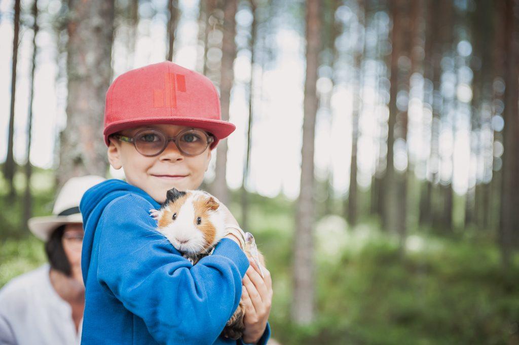 Pieneläinkoti Pihka. Poika pitää marsua sylissä.