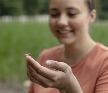 Tyttö pitelee leppäkerttua sormen päässä.